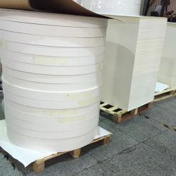 APP alto Bulk PE único papel inferior 170gsm para copos de papel
