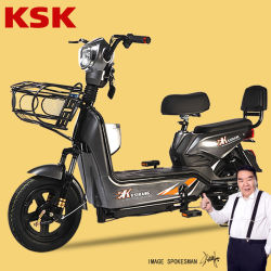 Borstelloze Motor Elektrische fiets Kit30km/H Opvouwbare E Bike 30 km/h Elektrische FietsenE-Bike