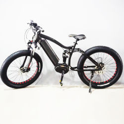 2019 Hot-Sell 48 V 350 واط Middle Drive Motor Fat Tyer Electric Bike