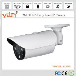 Cctv-Kontrollsystem-Digital-Überwachung-Videokameras für Sicherheits-Verteiler