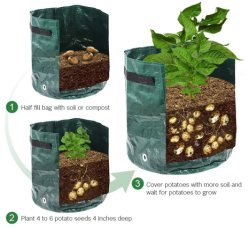 Groeitas, Heavy Duty Aeration Fabric Pots Groeibare Groeitassen, makkelijk te gebruiken Flower Non-Woven Groeizak Plantdoos Container Tuin Indoor Outdoor