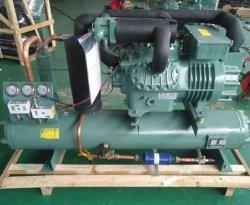 Fornecedor Venda Quente Compressor da unidade de condensação na sala fria