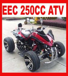 새로운 가스 구동 250cc 4 휠러 쿼드(MC-388)