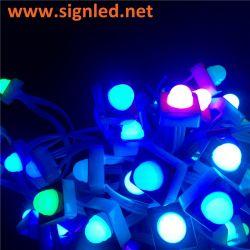 Colore programmabile di RGB dell'indicatore luminoso del pixel di vendita calda LED Digital