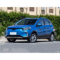 2020 Hete Mini Compacte Elektrische Auto's SUV voor het Elektrische voertuig van het Gebruik van de Familie