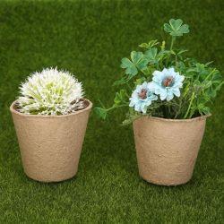 POT di fiore biodegradabili a gettare degradabili della famiglia della polpa del cassetto a gettare del semenzale
