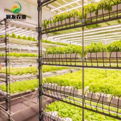 Agricultura Acessórios hidrop ico utilizado dreno Elétrico Hidroponia Tubo Quadrado de PVC