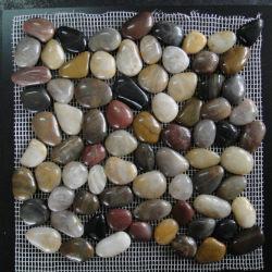 De natuurlijke Kleurrijke Cobble Tegel van het Mozaïek van de Kiezelsteen van de Steen van de Rivier