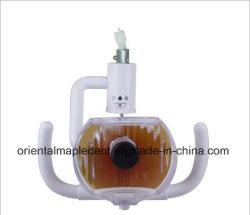 Zahnmedizinische Lampe des Halogen-Betriebsled mit Metallrahmen/zahnmedizinischer Fühler-Lampe