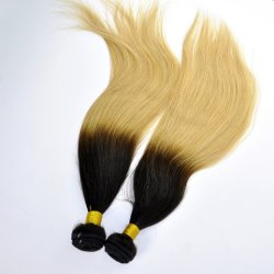 Malaysisches Virgin Hair Straight Ombre Human Hair Extensions