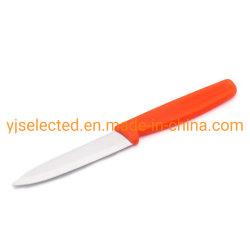 Aço Satinless Faca Emparelhamento reta de 4 Polegadas com lança e pontiagudas pega de plástico de cor