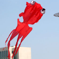 Hot Sale Soft Inflatable Goldfish/animal Kite sous forme de la Chine