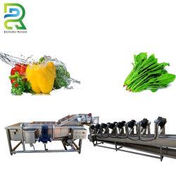 Lavatrice di verdure della bolla di aria della frutta di prezzi di fabbrica