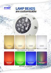 Raggruppamento di plastica di illuminazione di RGB LED di telecomando dell'ABS di applicazione della fontana