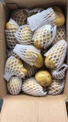 Preis der frischen Kartoffel für die Chip-Herstellung