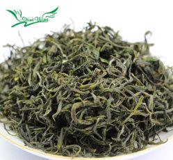 Premium Huang Shan Mao Feng Yellow Monte Maofeng Chá Verde