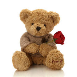 Ours ours Saint-Valentin Valentins Stuff Teddy Bear