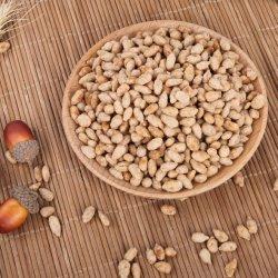 Certificado Halal Snack fritos recubierto de granos de semillas de girasol más barato al por mayor