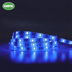 Néon led 5m de la Chine offre Smart WiFi souple multicolore 5050 SMD LED Strip Light pour partie, des décorations de Noël
