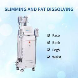 الجمال المحكم الدسم آلة حرق الدهون معالجة الدهون تجميد الدهون Cryolulse جهاز التَقَلُيس