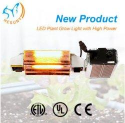 Iluminação Comercial System 1000W watt HPS cresça de sódio para luzes de gases com efeito de culturas hidropónicas