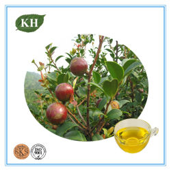 Detergente Natural Extracto de semilla de Camelia Tea saponina 60%-98%