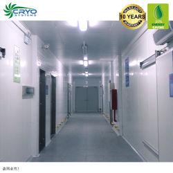 20 % de l'électricité de l'enregistrement usine de transformation de fruits de mer Ca chambre froide