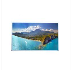 De digitale Vertoning van TFT LCD de Monitor van 18.5 Duim met Interface Lvds