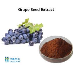 ブドウのシードのエキス95% OPC Proanthocyanidinsの粉