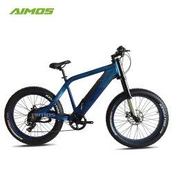 Plage de la neige Ebike loisirs Vélo électrique avec prise en charge des pneus de matières grasses Exemple de commande