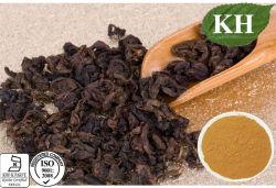 Les polyphénols de thé Anti-Oxidiant 80 % Extrait de thé Oolong
