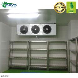 Portador de vacuna contra el cuadro de la cadena de frío Carports con salas de almacenamiento, sistema de almacenamiento Modular comercial Mini Chambre Froide