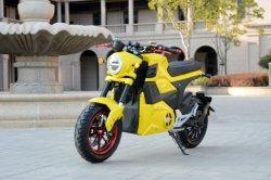 2019 CEE Produtos Novo Design personalizado com bicicletas eléctricas Adulto