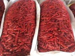Hot Chili Pepper sac en mesh
