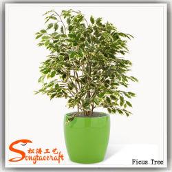 Cina fornitore artificiale Bonsai Ficus pianta albero
