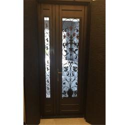 Внутренних дел металлические двери безопасности утюг стали красивый вход