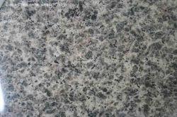 Het Chinese Graniet van de Huid van de Luipaard Lichtgele/Bruine Veelkleurige die voor Decoratie van de Bovenkanten van de Tegels van de Vloer van de Muur de Tegen wordt opgepoetst