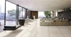 Il pulitore modella il pavimento non tappezzato sulla vendita