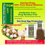 Herbal Bestandteil-Heilung-Kokzidiose für Geflügel mit rückstandslosem, toxische Substanz geben frei, der freie Droge-Widerstand