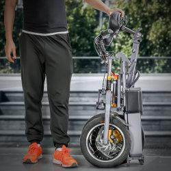 Nuova bici pieghevole di 250W E che piega bicicletta elettrica con il litio 48V di Samsung