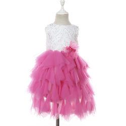 Девочек розового цвета с возможностью горячей замены партии Туту Латинской Dance платья для детей мода