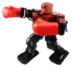 La danse du robot humanoïde Double-Legged du robot de combat de boxe voix MP3 transcende 17 degrés de liberté cadeau de Noël