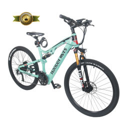 Peerless a Batterie au Lithium Ebike Pack de batterie de vélo de montagne 48V 10,4Ah 27,5 pouces en aluminium de roue de bicyclette de montagne électrique