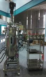 Aço inoxidável biofármacos fermentador System (Auto/Manual) SIP