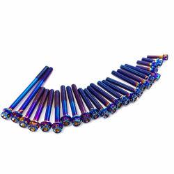 M8X12 Gr5の虹カラーチタニウムの合金のナイロンパッチが付いている十六進ソケットねじ