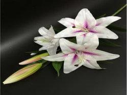 Natürliche Noten-künstliche Blumen der Tiger-Lilie 787563-7