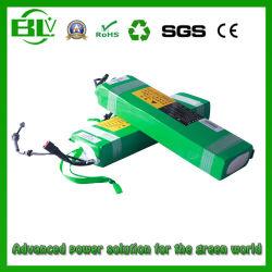 24V36V48V E Bike/vélo/batterie au lithium pour vélo électrique batterie Chargeur de batterie