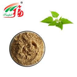 Usine de haute qualité la meilleure qualité d'alimentation de l'ortie extrait de racine