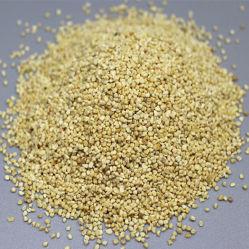 Corncob comida, los medios de comunicación de pulido de grano mazorcas de maíz seco