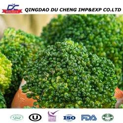 2020 Nova Colheita congelado IQF brócolos e vegetais congelados